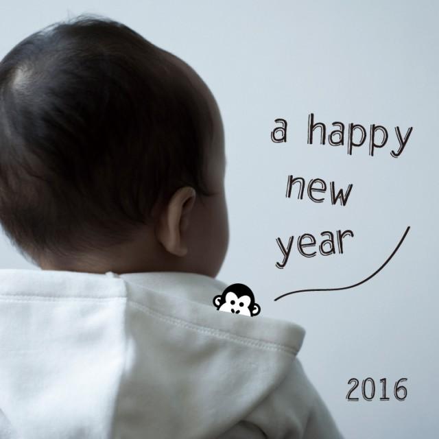 2016 サル